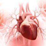Häufige Anzeichen Herzinfarkt