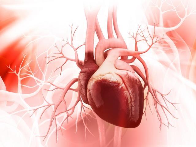 Anzeichen für einen Herzinfarkt: Schnelles Handeln ist wichtig